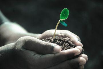 Uso del suolo ad altissima risoluzione per le zone costiere