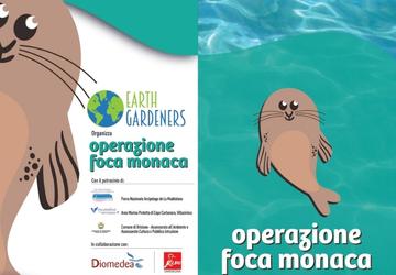 Operazione foca monaca, un progetto che sosteniamo!